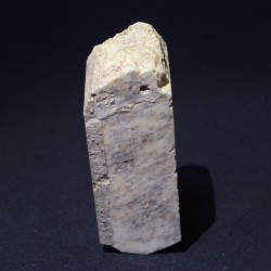 Ortosa